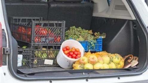 面包车装3箱水果被罚1200元,车主欲哭无泪:自家的车不能做主?