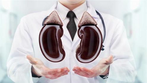 """每个人有两个肾,如果少一个""""肾""""身体有什么影响?看完心情复杂"""