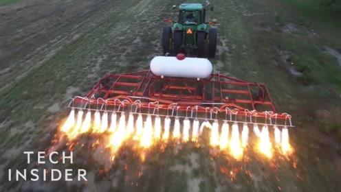 美国农业的除草方式这么牛?还真是头一次看到