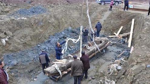 四川发现神秘大墓,出土2000年前美酒,专家:最后的古蜀王朝!