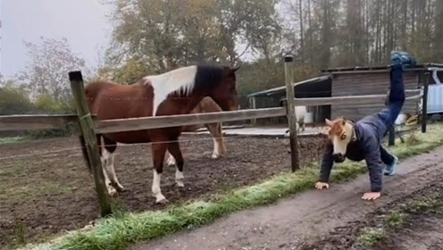 马:驴不像驴马不像马的 这是唱得哪一出啊