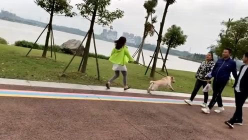 街边看到一小姐姐,人家都是遛狗,你这是狗遛你吧