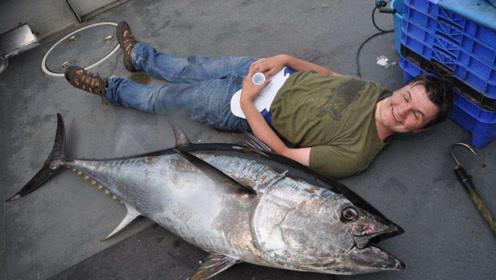 世界上最贵的鱼,渔民只需出海捕捞一条,一线城市立马有套房!