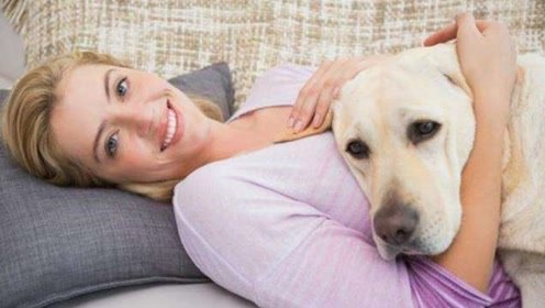 难怪许多单身女性都喜欢养狗,很多人还养巨型犬,说出来你别不信