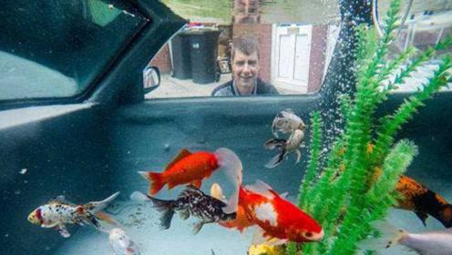 男子趁妻子出游,将自家汽车改装成鱼缸,妻子回来后崩溃了!