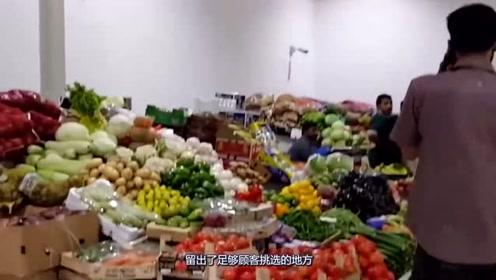 实拍迪拜豪气菜市场,种类丰富,鲨鱼都是成堆售卖