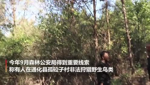 吉林森林公安破获特大非法狩猎案还鸟类自由
