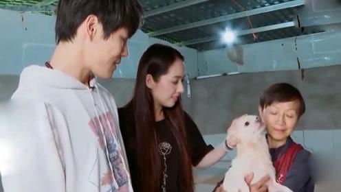 郭碧婷要求向佐抱狗,被告知狗脏后他下意识的反应,张绍刚:素质装不出!