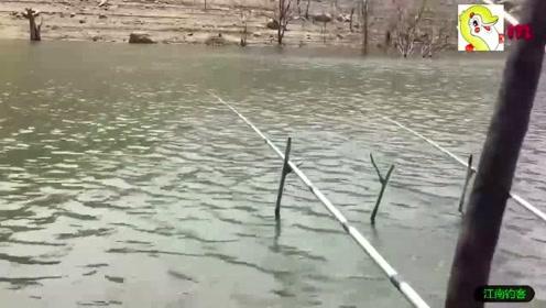 钓竿瞬间被拉动,小伙快步上前抓起钓竿就拉,折腾几圈收获肥鲤鱼