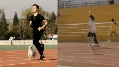 实力抢镜!大学生体测1千米,狗子陪跑瞬间反超