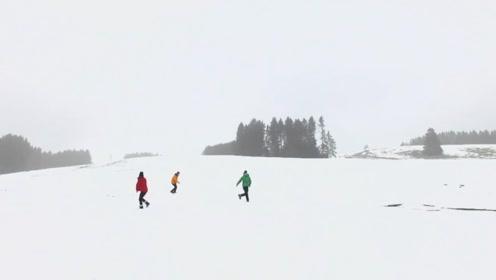 南方人初见雪 当然要打个滚为敬