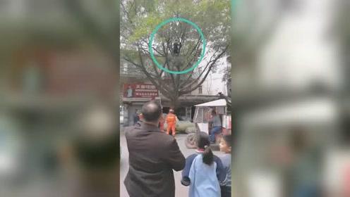 与家人闹别扭!男子一言不合竟爬树不愿下来