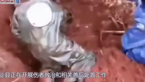 广西8名村民路遇黄蜂群被蜇:3人死亡5人受伤