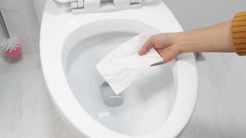 卫生纸应该丢马桶里还是垃圾桶?看完总算知道了,难怪厕所那么臭