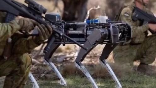 澳大利亚测试战争机械狗,专家提出优点多,但也存在道德风险