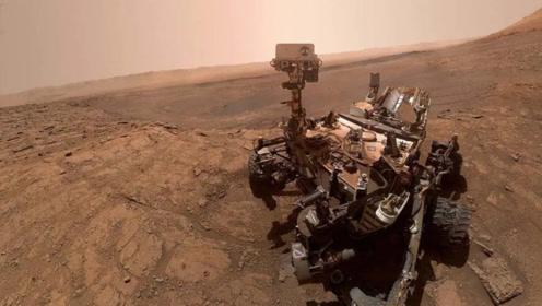 火星上发现了生命?NASA公布火星照片中,疑似发现了火星昆虫化石