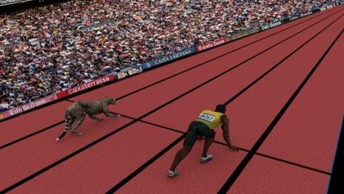 博尔特9.58秒的百米冲刺纪录,在动物界排名第几?答案让人很意外