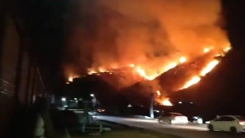 厦门山火后续:大火迅速蔓延烧了一夜 数百人紧急救援!