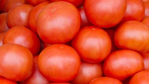 早上空腹吃西红柿可以排毒?对身体都很好