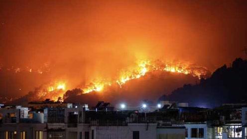 广西突发山火嫌疑人被刑拘,过火面积超40亩