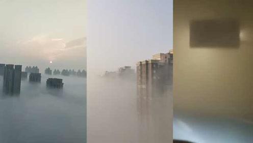 红色预警!山东大范围强雾,市民感叹:快找不着家了