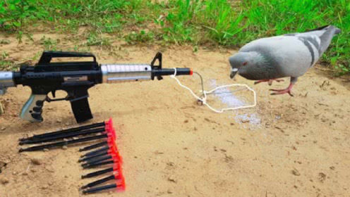 柬埔寨小男孩,用玩具枪制作捕鸟器,别说效果还真不错