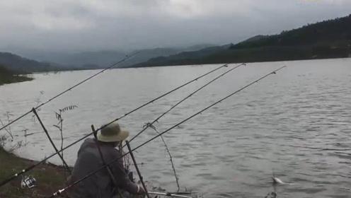 大叔河边撒下钓竿,看着钓竿一下被拉动大叔立刻跑去拉钓,收获一条大鲤鱼