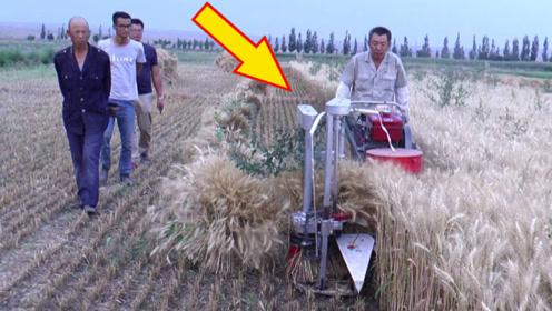 """四川农民发明""""收麦神器""""!半天收割70亩地,成本只需2000块"""