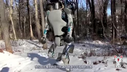 用棍棒打智能机器人它会反抗吗?老外作死实验,结果颠覆认知!