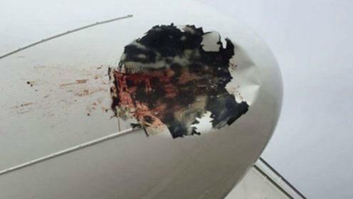 如果飞机在飞行过程中,鸟儿撞到飞机会有多大破坏力?堪比核武器