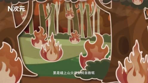 秋冬季节山火频发,遇到山火如何自保?记住这4点关键时刻能保命