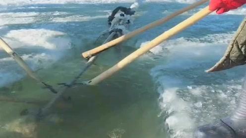 北方人的乐趣,每到这个时节,都是捕鱼的最好时刻!