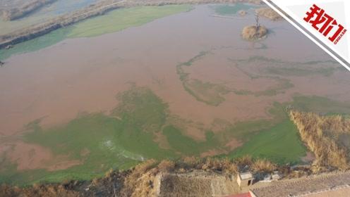 河北霸州现彩色污染坑塘追踪:已为部分村民建粪污处理设施