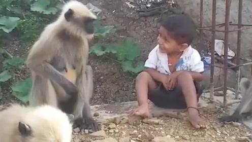 印度5岁男孩精通猴语,猴子们天天找他聊天,让人不敢相信