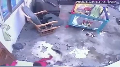 小主人即将摔下楼梯,猫咪瞬间飞扑营救小主人,镜头拍下全过程