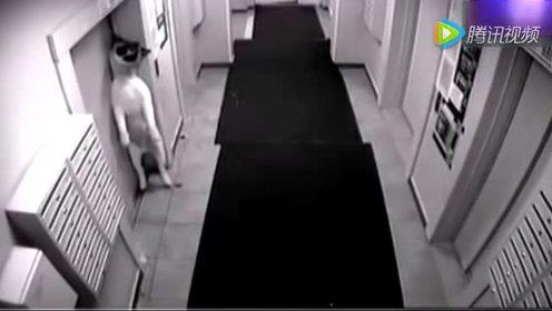 男子带狗进电梯发生了令人乍舌的一幕 太可怕了!