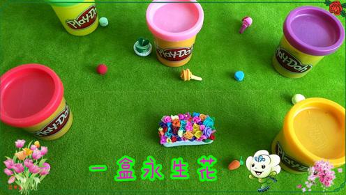幼儿园彩泥手工制作 一盒永生花