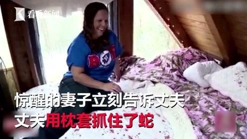 女子睡梦中翻身 竟然压到一条蛇并被咬住腿