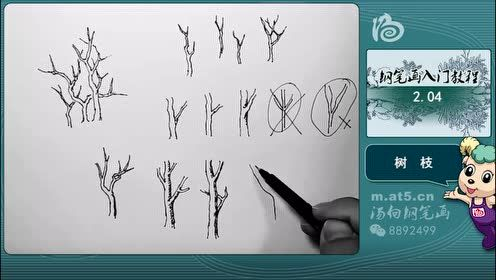 汤向钢笔画——风景速写入门教程:树枝