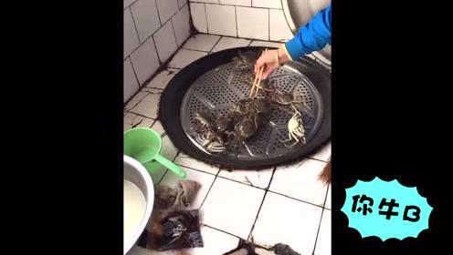 想吃螃蟹是有困难的 这些螃蟹求生欲真强