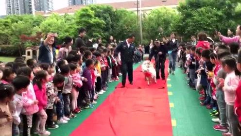 杭州一幼儿园为两只山羊办了婚礼