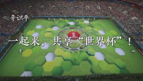 """辛识平:一起来,共享""""世界杯""""!"""
