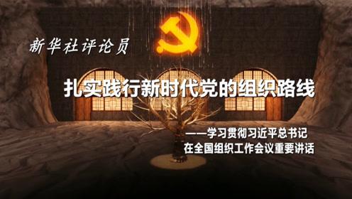 新华社评论员:扎实践行新时代党的组织路线