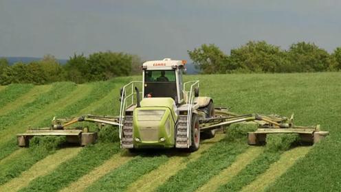 世界最大割草机,一次收割5排,收割一小时够1000头牛吃一天!