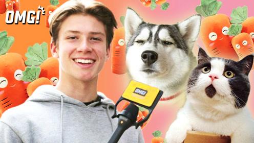 中英街访:如何看待素食者给自己的猫狗吃素?