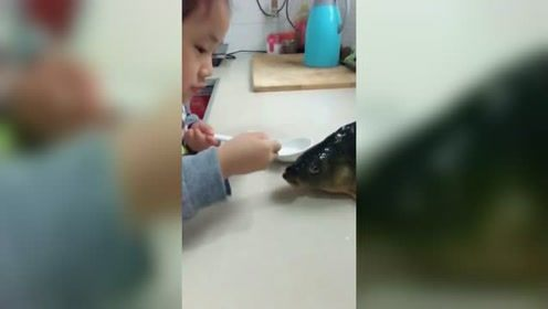 一个敢喂一个敢喝 5岁萌娃用勺儿喂鱼喝水