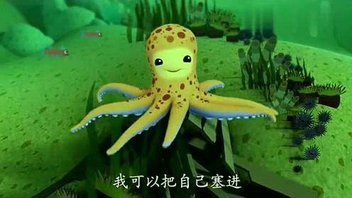 苍蝇小章鱼:颜色还改变自己的图案这是牌子海底魔术是哪个纵队图片