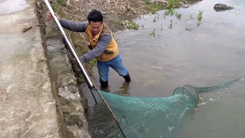 小伙爱心泛滥,陷阱捕到的大鲤鱼居然放生了,古人说:莫捕三月鱼