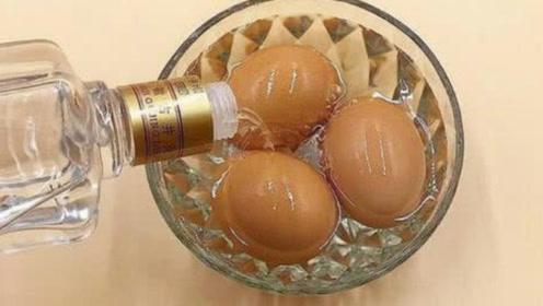 把白酒倒在鸡蛋上,真的太实用,可惜很多人都不懂,早学早受益