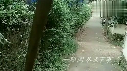 国外女子走小路回家,突然感觉有危险,跑还来得及么!